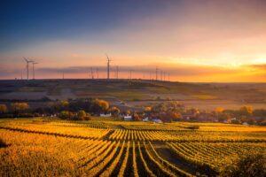 Landbrug med gule marker og huse