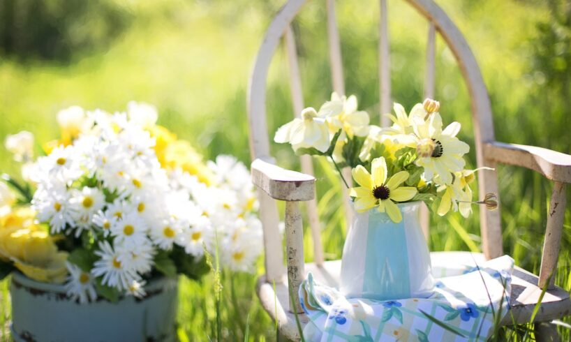 Stol hvor der står en krukke med blomster